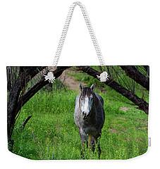 Horse's Arch Weekender Tote Bag