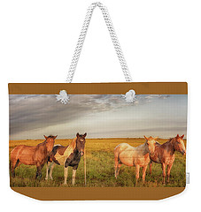 Weekender Tote Bag featuring the photograph Horses At Kalae by Susan Rissi Tregoning