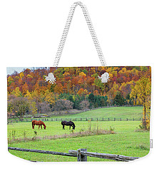 Horses Contentedly Grazing In Fall Pasture Weekender Tote Bag