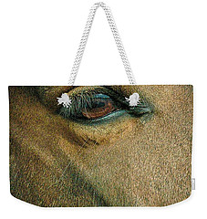Weekender Tote Bag featuring the photograph Horses Eye by Bruce Carpenter