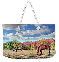 Horses Grazing At A Stable In Maryland Weekender Tote Bag