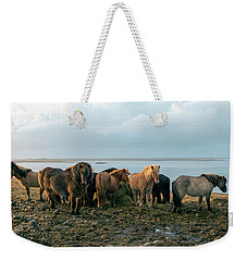 Horses In Iceland Weekender Tote Bag by Dubi Roman