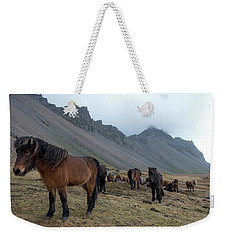 Horses Near Vestrahorn Mountain, Iceland Weekender Tote Bag by Dubi Roman