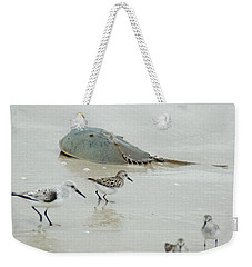 Weekender Tote Bag featuring the photograph Horseshoe Crab With Migrating Shorebirds by Richard Bryce and Family