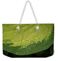 Weekender Tote Bag featuring the photograph Hosta Drops by Jean Noren