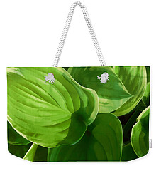 Weekender Tote Bag featuring the photograph Hosta Summer Green by Ann Powell