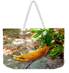 Hot Cat Weekender Tote Bag by David  Van Hulst