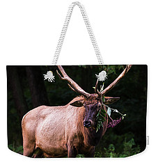 Weekender Tote Bag featuring the photograph Hot Date Tonight by Andrea Silies