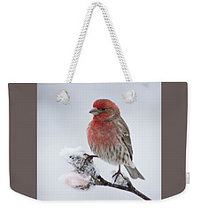 House Finch And Spring Snowfall - D010346 Weekender Tote Bag
