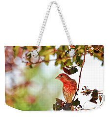 Weekender Tote Bag featuring the photograph House Finch Hanging Around by Kerri Farley