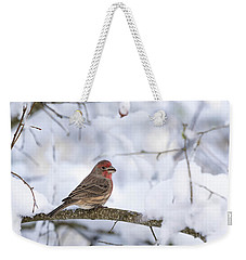 Weekender Tote Bag featuring the photograph House Finch In Snow by Brian Bonham