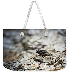 Weekender Tote Bag featuring the photograph House Fly by Chevy Fleet