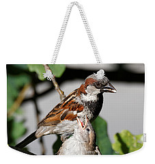 Weekender Tote Bag featuring the photograph House Sparrow - Feed Me Daddy by Sue Harper