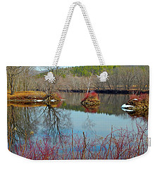 Housesitting 41 Weekender Tote Bag