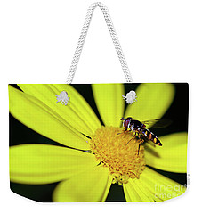 Weekender Tote Bag featuring the photograph Hoverfly On Bright Yellow Daisy By Kaye Menner by Kaye Menner
