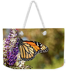 Weekender Tote Bag featuring the photograph Hues Of Autumn Monarch by Lara Ellis
