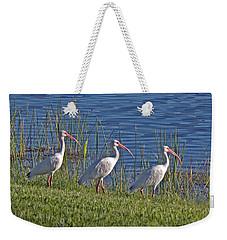 Huey Dewey And Louise Weekender Tote Bag