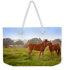 Weekender Tote Bag featuring the photograph Hug It Out by Melinda Ledsome