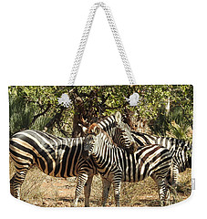Weekender Tote Bag featuring the photograph Hug Time by Betty-Anne McDonald