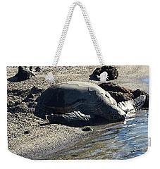 Huge Sea Turtle Weekender Tote Bag by Karen Nicholson