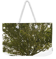 Weekender Tote Bag featuring the photograph Hugging The Fairy Tree In Ireland by Ian Middleton