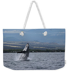 Weekender Tote Bag featuring the photograph Humback Whale by Pamela Walton
