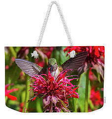 Hummingbird At Eagles Nest Weekender Tote Bag