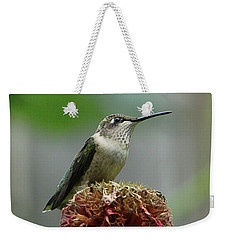 Humming Bird Atop Bee Balm Weekender Tote Bag