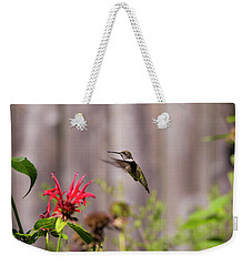Humming Bird Hovering Weekender Tote Bag