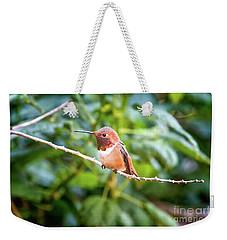 Humming Bird On Stick Weekender Tote Bag by Stephanie Hayes