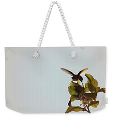 Weekender Tote Bag featuring the photograph Hummingbird And Lemon Blossoms by Cindy Garber Iverson