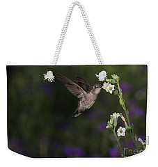 Hummingbird Enjoying Flowers Weekender Tote Bag