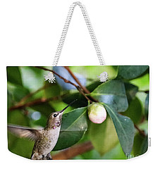 Hummingbird In Flight Weekender Tote Bag