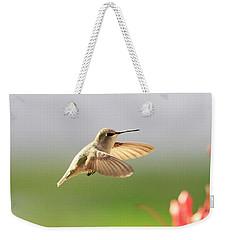 Hummingbird Profile Weekender Tote Bag by Shoal Hollingsworth