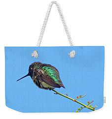Hummingbird Resting  Weekender Tote Bag