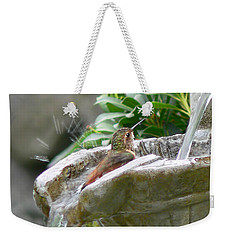 Hummingbirds Do Take Baths Weekender Tote Bag by Jennie Marie Schell