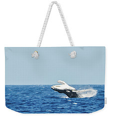 Humpback Smackdown Off Bermuda Weekender Tote Bag by Jeff at JSJ Photography