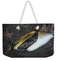 Weekender Tote Bag featuring the photograph Humuhumunukunukuapua'a by Colleen Coccia