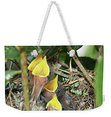 Weekender Tote Bag featuring the photograph Hungry Baby Birds by Jerry Battle
