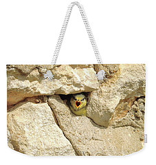 Hungry Chick Weekender Tote Bag