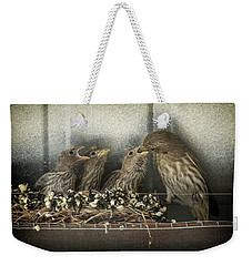 Weekender Tote Bag featuring the photograph Hungry Chicks by Alan Toepfer