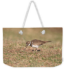 Hungry Killdeer Weekender Tote Bag by Karen Silvestri