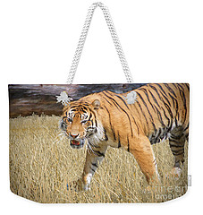 Weekender Tote Bag featuring the painting Hungry Tiger by Judy Kay