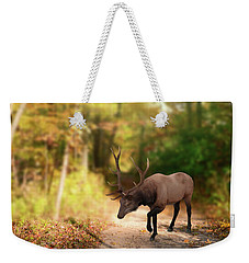 Weekender Tote Bag featuring the photograph Hunters Dream by Mary Timman