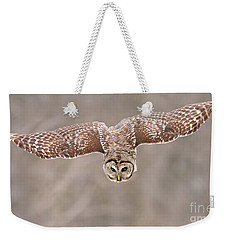 Hunting Barred Owl  Weekender Tote Bag by Mircea Costina Photography