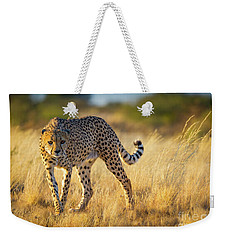 Hunting Cheetah Weekender Tote Bag by Inge Johnsson