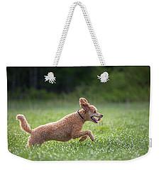 Hunting Dog Weekender Tote Bag