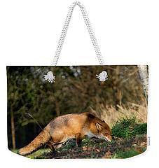 Hunting Fox  Weekender Tote Bag