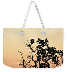 Hush Little Baby Weekender Tote Bag by John Glass