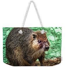 Hutia, Tree Rat Weekender Tote Bag